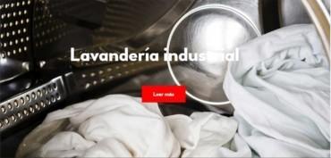 bugaderia industrial i tintoreria
