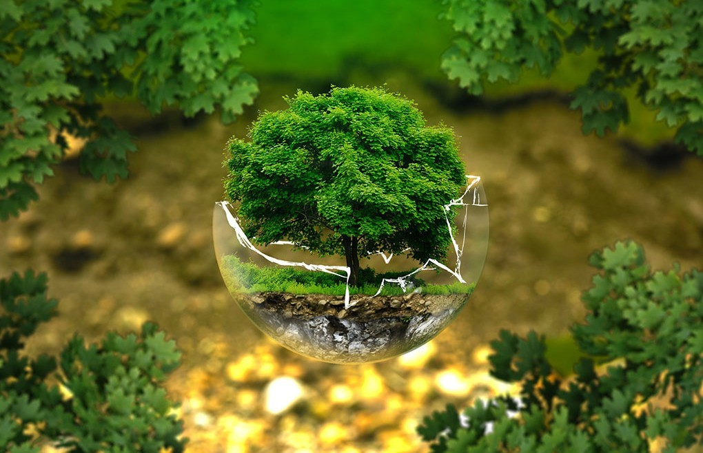 Lavandería respetuosa con el Medio Ambiente