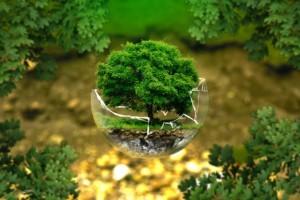 servicio de limpieza y desinfeccion por ozono